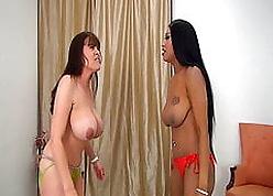 Patrice vs Rebecca  Obese Titty Battlers